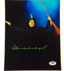 "IDINA MENZEL Autograph WICKED ""Elphaba"" Signed 8x10 Photo w/ PSA ITP Witness COA"