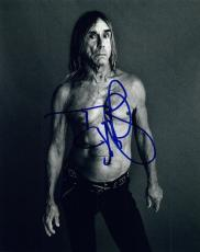 Iggy Pop Signed Autographed 8x10 Photo The Stooges COA VD