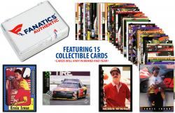 Ernie Irvan Collectible Lot of 15 NASCAR Trading Cards - Mounted Memories
