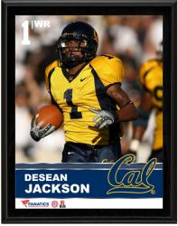 "DeSean Jackson California Golden Bears Sublimated 10.5"" x 13"" Plaque"