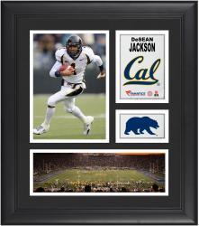 """DeSean Jackson Cal Bears Framed 15"""" x 17"""" Collage"""