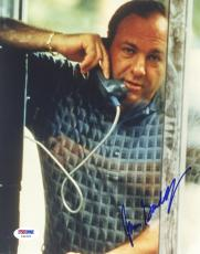 "James Gandolfini Autographed 8""x 10"" The Sopranos In Phone Booth Photograph With Blue Ink - PSA/DNA COA"