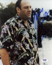 "James Gandolfini Autographed 8""x 10"" The Sopranos Wearing Flowered Shirt Photograph With Tony Inscription - PSA/DNA COA"