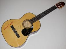James Taylor Autographed Guitar (fire And Rain) - Beckett Coa!