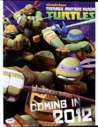 Jason Biggs Ninja Turtles Signed 11X14 Photo PSA/DNA #S87550