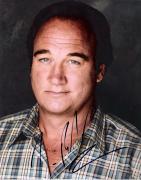 "JIM BELUSHI of ""ACCORDING to JIM"" Signed 8x10 Color Photo"