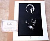 Jimmy Page Led Zeppelin Rare 1967 Signed Autographed 16x20 Photo #23/50 Page COA