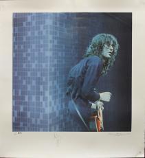 Jimmy Page Signed 30x33 Sandra Lawrence Art Print LE #219/300 Auto Graded 10 BAS