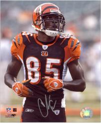 Chad Johnson Signed Photograph - 8x10 Mounted Memories