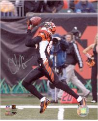 Chad Johnson Autographed Picture - 8x10 Mounted Memories