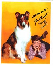 "JON PROVOST ""LASSIE"" as TIMMY Signed 8x10 Color Photo"