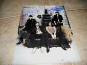 Kings or Leon Band Signed Autographed 11x14 Guitar Photo #1 x2
