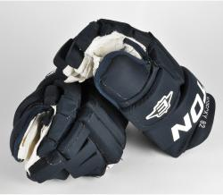 Tomas Kopecky Florida Panthers Game-Used Easton Pro Hockey Gloves - Mounted Memories