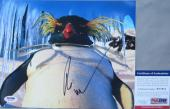 LEGEND!!! Robin Williams LOVELACE Signed HAPPY FEET 8x10 Photo #3 PSA/DNA