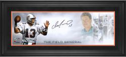Dan Marino Miami Dolphins Framed Autographed 10'' x 30'' Field General Photograph-#2-12 or #14-24 of a Limited Edition of 24 - Mounted Memories