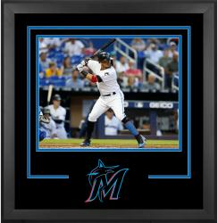 "Miami Marlins Deluxe 16"" x 20"" Horizontal Photograph Frame - Mounted Memories"