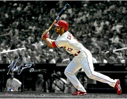 "Matt Carpenter St. Louis Cardinals Autogrpahed 11"" x 14"" Spotlight Photograph"