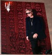 Matt Sorum Signed Autograph Guns & Roses Drummer Photo