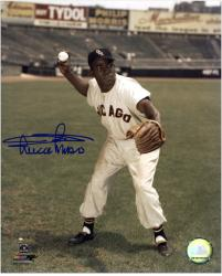Minnie Minoso Chicago White Sox Autographed 8'' x 10'' Fielding Photograph - Mounted Memories