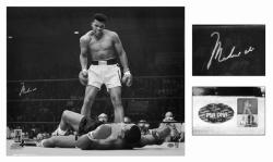 Muhammad Ali Autographed 20'' x 24'' vs Sonny Liston Knockdown Photograph