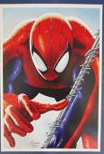 Tony Santiago Spiderman MARVEL 12x18 Print 127147