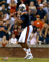 Cam Newton Auburn Tigers Autographed 16'' x 20'' Looking To Pass Photograph - Mounted Memories