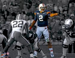 Cam Newton Auburn Tigers Autographed 11'' x 14'' Spotlight Pointing Photograph - Mounted Memories