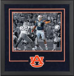 Cam Newton Auburn Tigers Autographed 16'' x 20'' Spotlight Photograph - Mounted Memories
