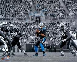 Cam Newton Carolina Panthers Autographed 16'' x 20'' Spotlight Photograph - Mounted Memories