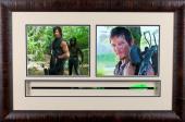 The Walking Dead Framed Daryl Dixon Style Bone Collector Crossbow Arrow