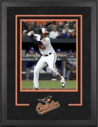 """Baltimore Orioles Deluxe 16"""" x 20"""" Vertical Photograph Frame"""