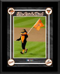 Baltimore Orioles Mascot Sublimated 10.5x13 Plaque