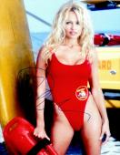 Pamela Anderson Signed - Autographed Baywatch 11x14 inch Photo - Guaranteed to pass PSA or JSA