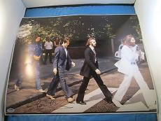 Paul McCartney The Beatles Signed 16x20 Photo PSA DNA COA ABBEY ROAD Autograph