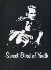 Paul Newman Geraldine Page Tennessee Williams Sweet Bird Of Youth Rare Program