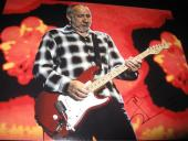PETE TOWNSHEND SIGNED AUTOGRAPH 11x14 PHOTO THE WHO CONCERT SHOT IN PERSON COA G