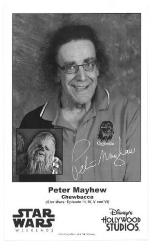 Peter Mayhew facsimile Chewbacca Star Wars Weekends 4.5x7.5 B&W Photo (Disney's Hollywood Studios)