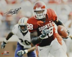 Adrian Peterson Oklahoma Sooners Autographed 16'' x 20'' Horizontal Red Uniform Photograph - Mounted Memories