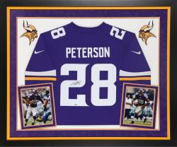 Adrian Peterson Autographed Vikings Limited Jersey - Deluxe Framed