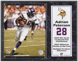 "Adrian Peterson Minnesota Vikings Sublimated 12"" x 15"" Player Plaque - Mounted Memories"