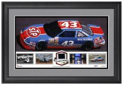Richard Petty Framed Panoramic with Race-Used Tire-Limited Edition of 500 - - Mounted Memories