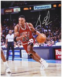 "NBA Chicago Bulls Scottie Pippen Autographed 16"" x 20"" Photo - Mounted Memories"