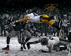 Troy Polamalu Pittsburgh Steelers Autographed 11'' x 14'' Spotlight Photograph
