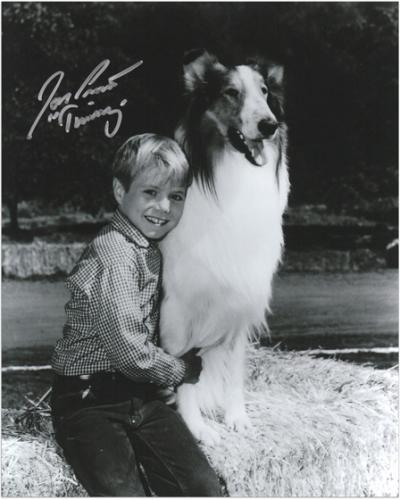 "Jon Provost Autographed 8"" x 10"" Lassie Show Photograph with Timmy Inscription"