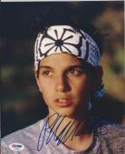 RALPH MACCHIO Signed KARATE KID 8 x10 PHOTO with PSA/DNA COA