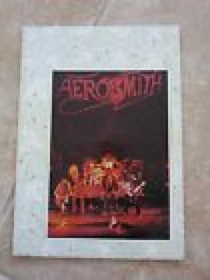 RARE 1976 AEROSMITH OFFICIAL EUROPEAN ROCKS TOUR PROGRAM-Steven Tyler-Joe Perry
