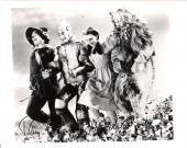 "RAY BOLGER as the SCARECROW in the ""WIZARD OF OZ"" Signed 10x8 B/W Photo"
