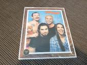 Red Hot Chili Peppers One Hot Minute Record Store Promo Stand Up Counter Display