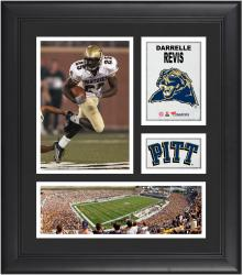 """Darrelle Revis Pittsburgh Panthers Framed 15"""" x 17"""" Collage"""