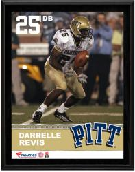 """Darrelle Revis Pittsburgh Panthers Sublimated 10.5"""" x 13"""" Plaque"""
